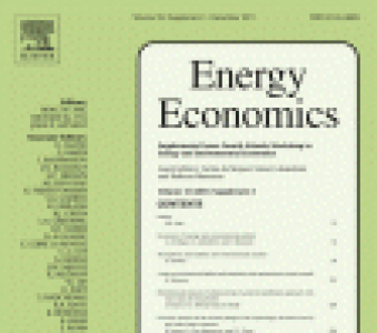 Publication of the special issue of Energy Economics: New Development in Energy Economics and Policy